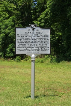 """""""Yankee Hill"""" #51"""