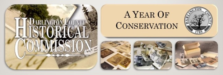 Year of Conservation