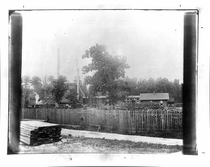 Carolina Fiber Company 1899.jpg